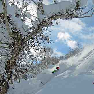 Deep in Jackson!, Niseko Hanazono Resort