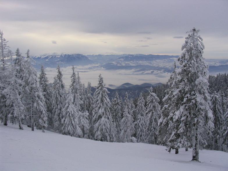 Poiana Brasov snow