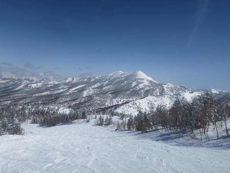 Top View, Shiga Kogen-Terakoya
