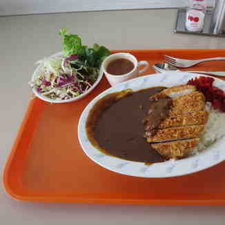 Japanese curry, Shiga Kogen-Terakoya