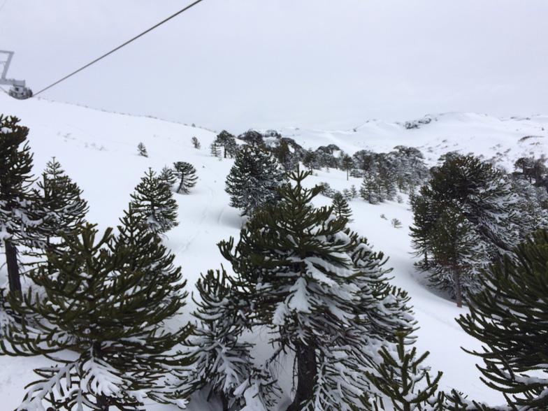 Cerro Caviahue