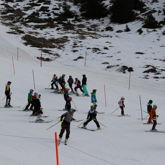 Skirennen, Frutigen - Elsigen - Metsch