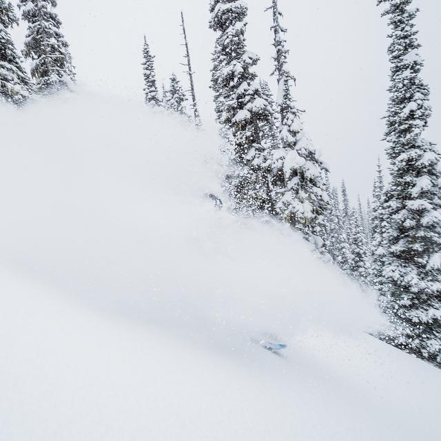 Powder Skiing at Silvertip Lodge, Silvertip Lodge & Heli-Skiing