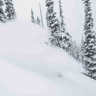 Powder Skiing at Silvertip Lodge, Silvertip Lodge & Heli-Skiing