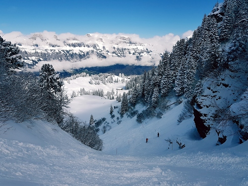 Flumserberg Ski Resort by: marios