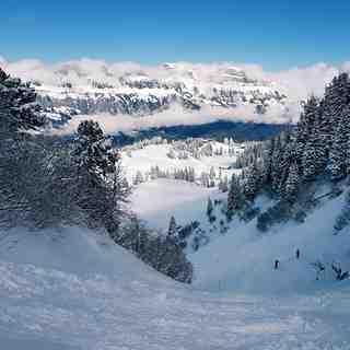 Flumserberg Snow: Powder love