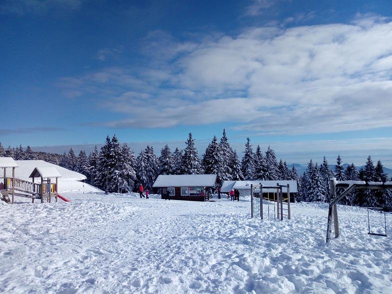 Rogla snow