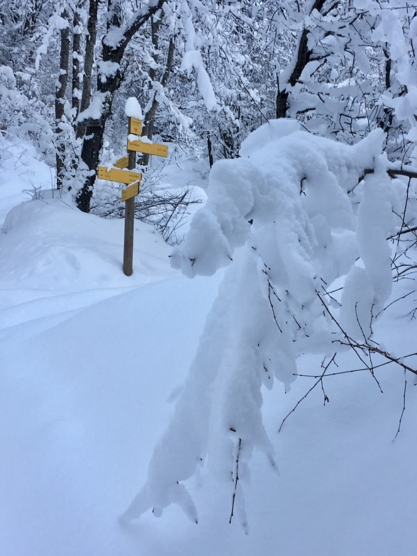 Winter walking in Meribel, Méribel