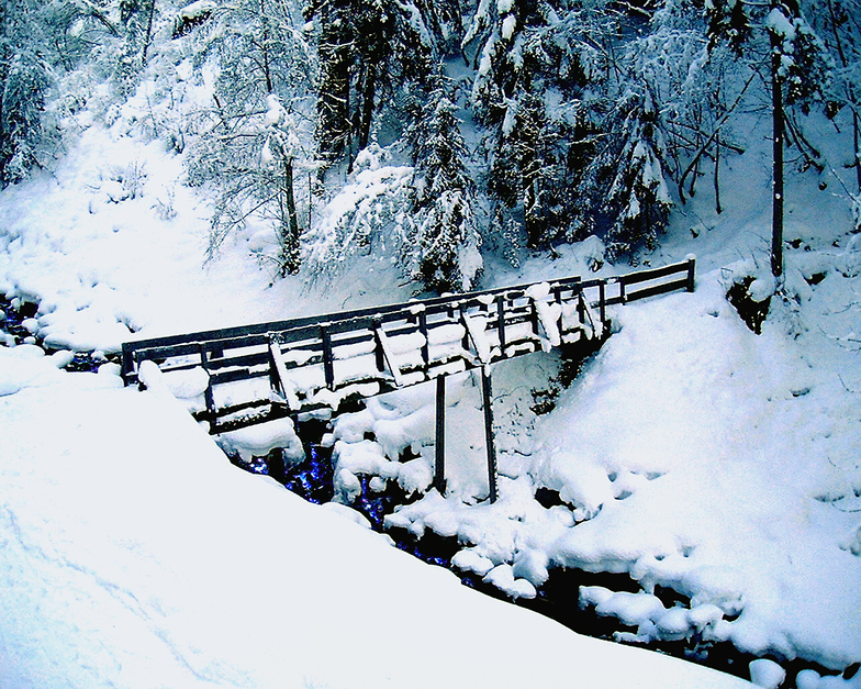 The old bridge, Hochkolber, Alpbachtal