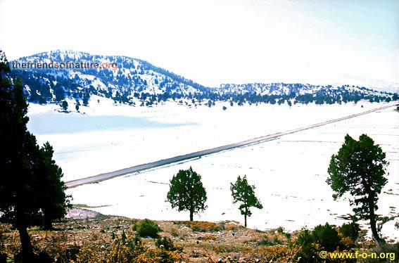 Akkar plain, North Lebanon, Mzaar Ski Resort