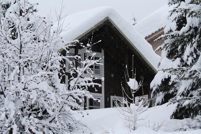 La Foux - chalet in the snow, Val d'Allos – La Foux (Espace Lumière)