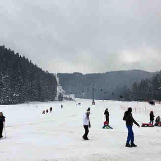 Ilgaz Yıldıztepe kayak merkezi, Mt Ilgaz
