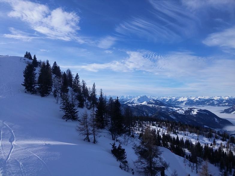 View, Waidring