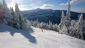 Carving, Smuggler's Notch photo
