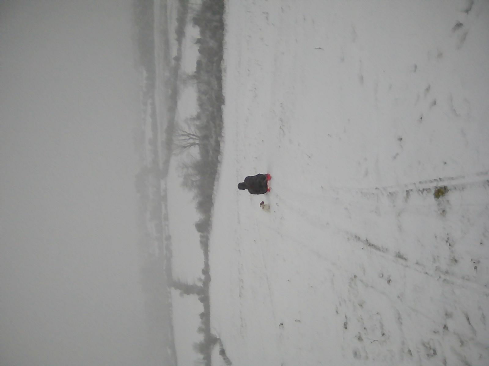 Downhill run Knocksheegowna., Knockanaffrin (Comeragh Mts)