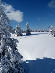 Picture perfect snow, Rogla photo