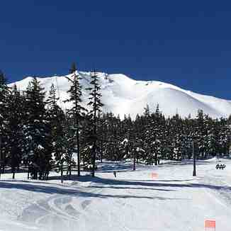 Blue bird day!, Mt Bachelor