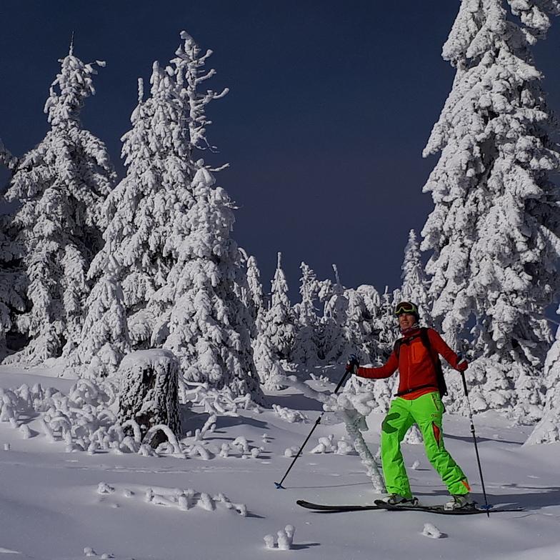 Pines, Harghita Mădăraş