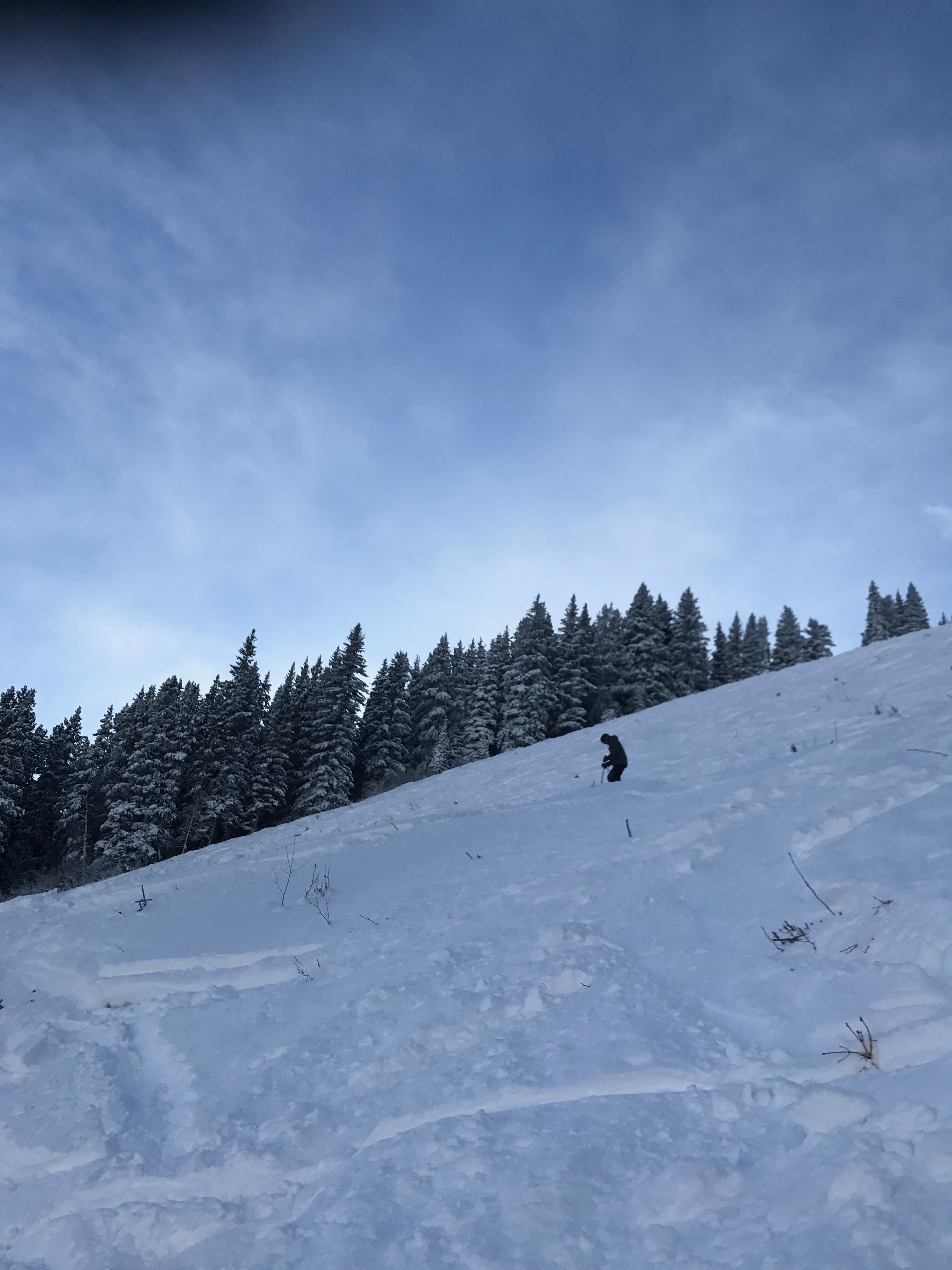 Lone Pine lower, Banff Mt Norquay