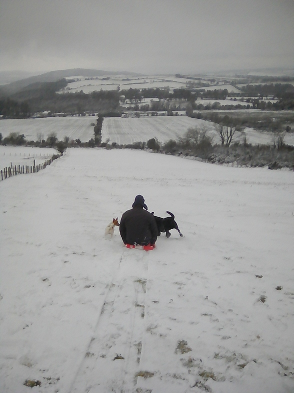 Gone to the dogs ;-), Knockanaffrin (Comeragh Mts)