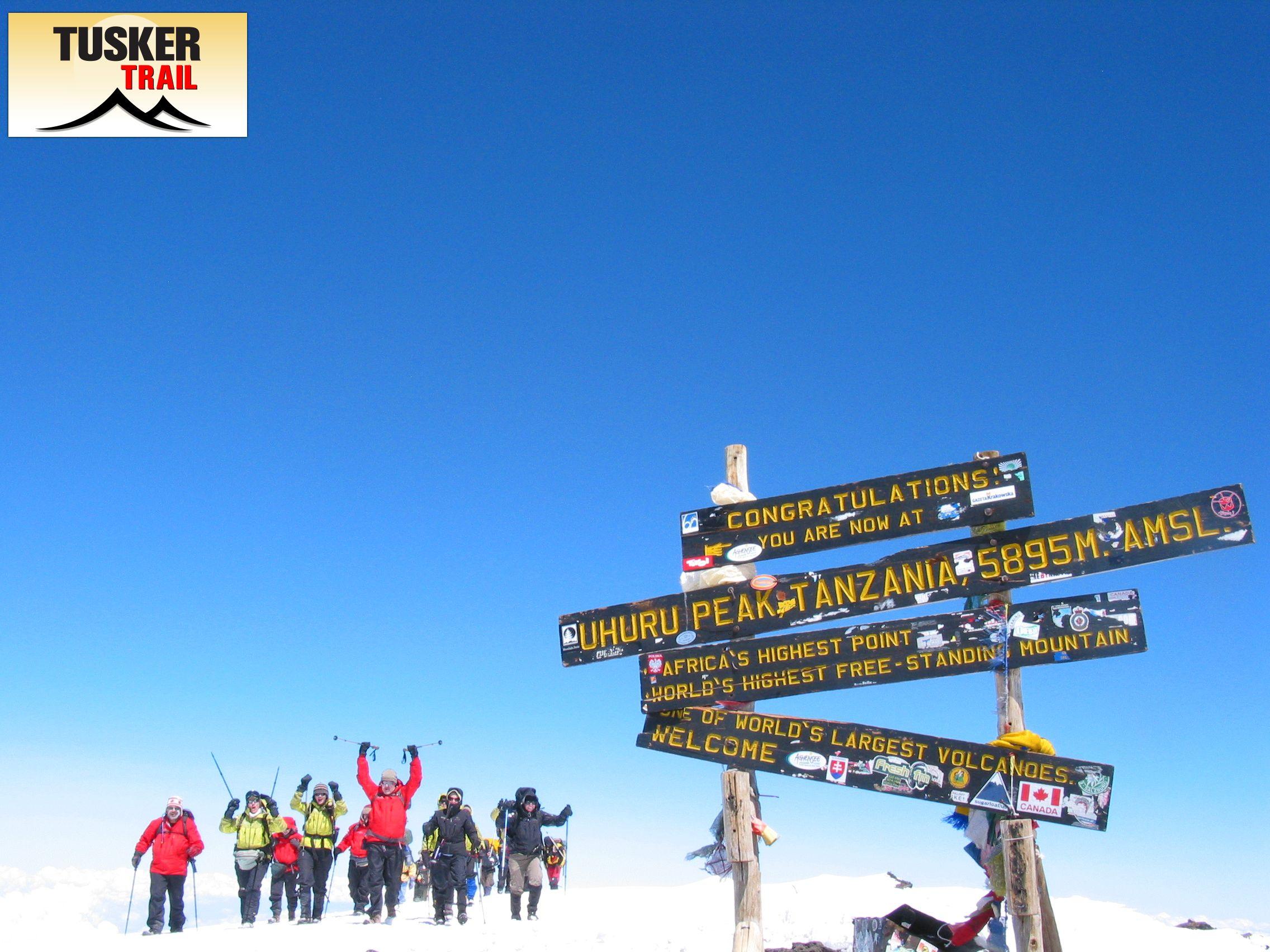 Approaching the Summit Uhuru Peak., Mount Kilimanjaro