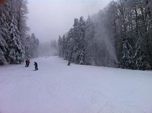 Snowy day, Kozara photo