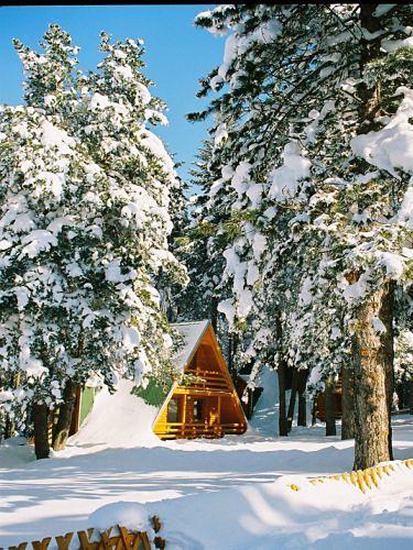 Zima Nacionalni Park, Kozara