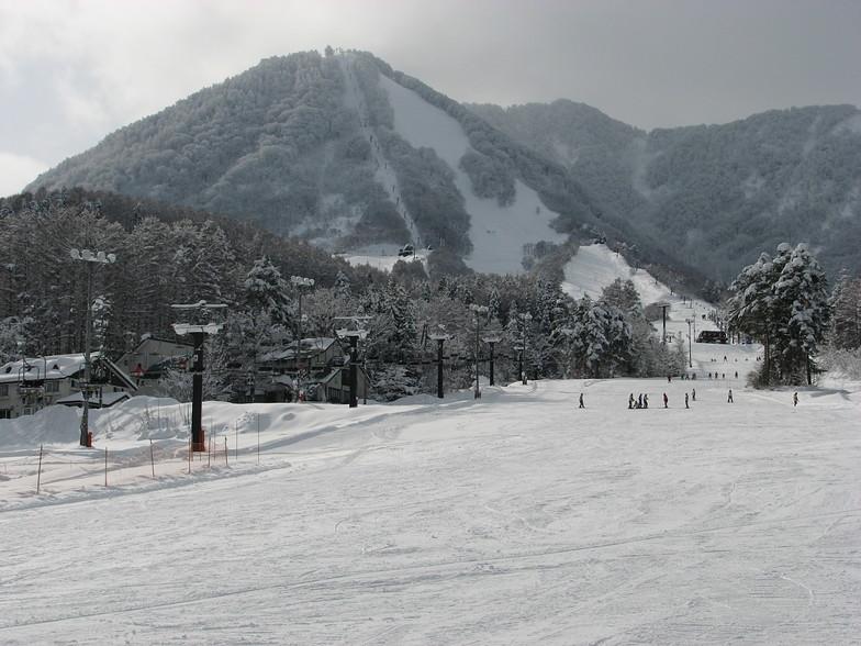 Kitashinshu Kijimadaira snow