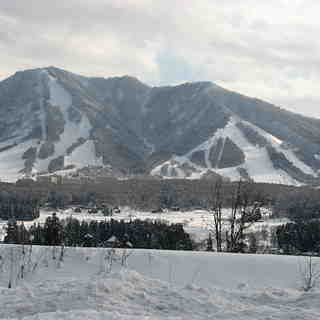 Kitashinshu Kijimadaira Snow: Sent to our help desk, by a user, in 2012.