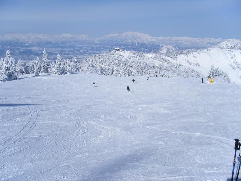 Sent to our help desk, by a user, in 2010., Shiga Kogen-Terakoya