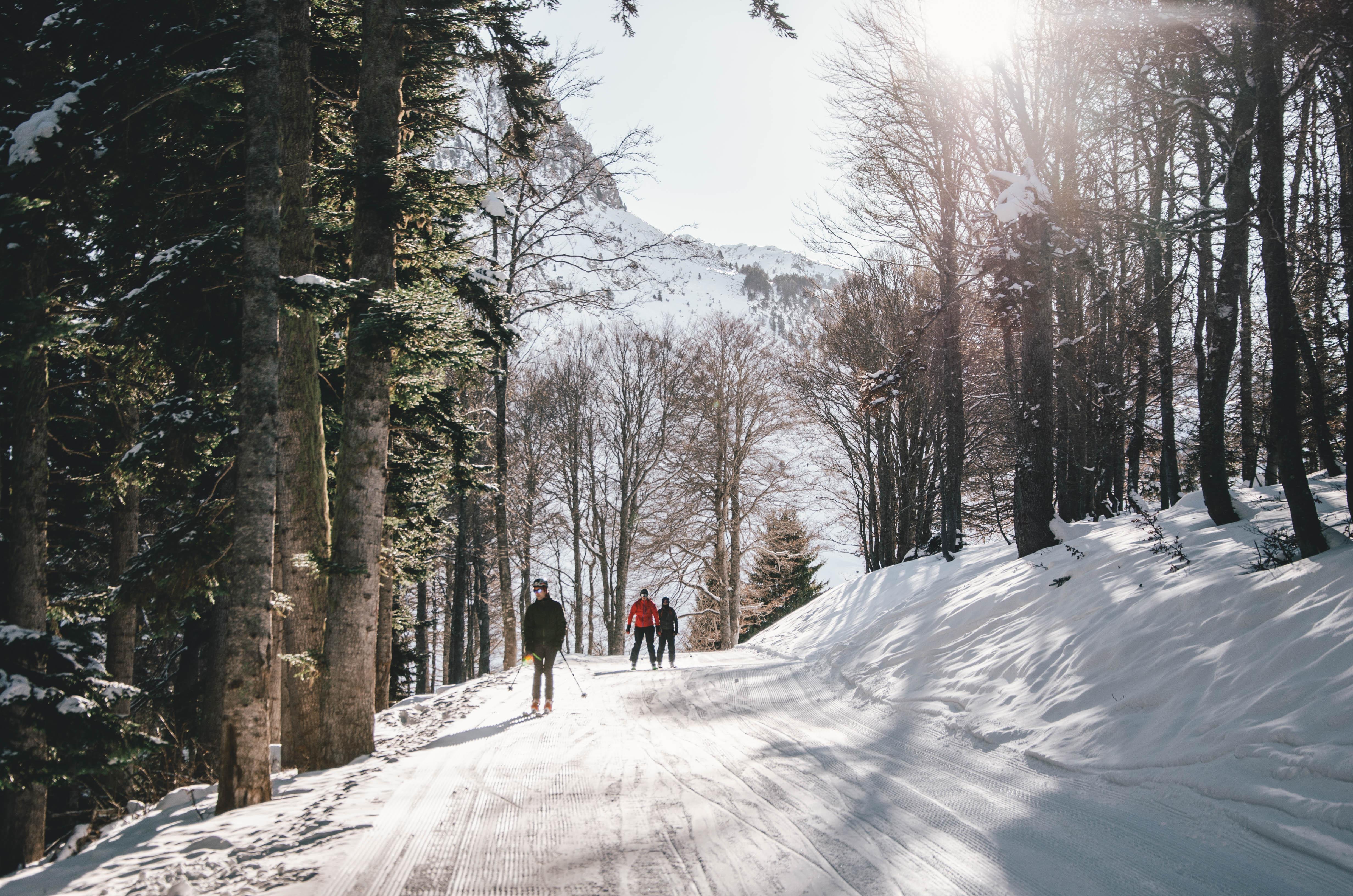 Forest - Barèges, Grand Tourmalet-Bareges/La Mongie