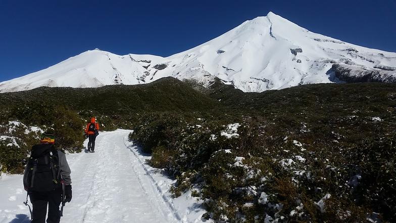 Access track to Manganui