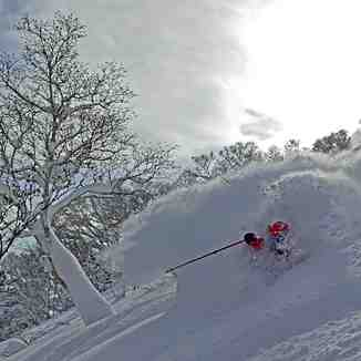 Deep in Japan!, Niseko Hanazono Resort
