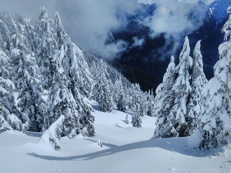 Out of boundaries, Cypress Mountain
