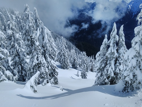 Cypress Mountain Ski Resort by: Pedro