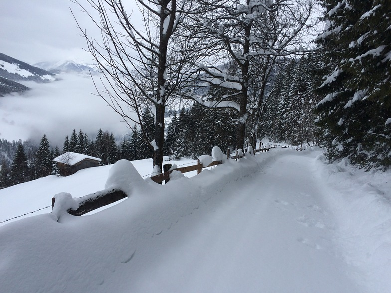 A quiet path, Alpbachtal