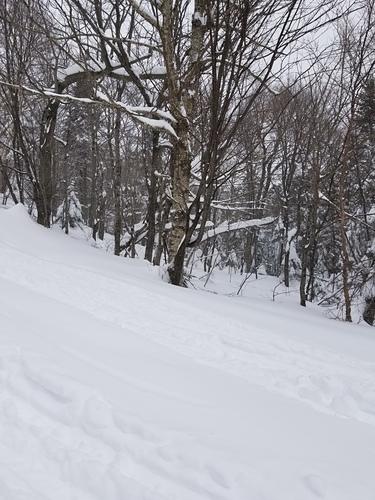 Mad River Glen Ski Resort by: William Tarkulich