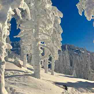 Winter wonderland, Poiana Brasov