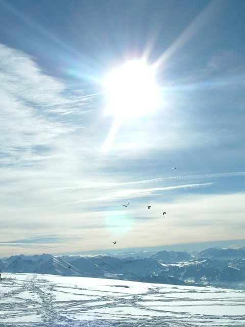 Snow Birds, Flaine