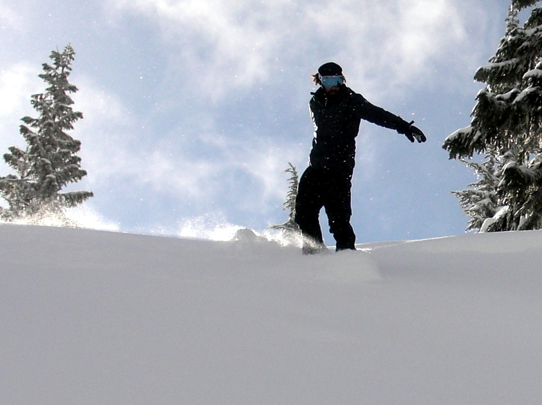 Deep Pow Day on Cowboy Mountain at Stevens Pass