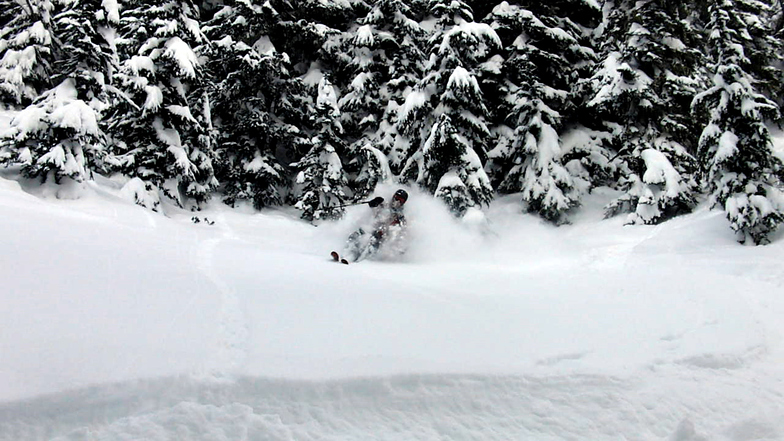 Deep pow in the backcountry, Stevens Pass