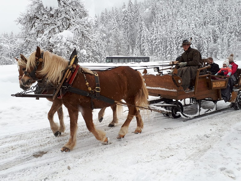 Horse drawn sleigh at Jagersee, Wagrain