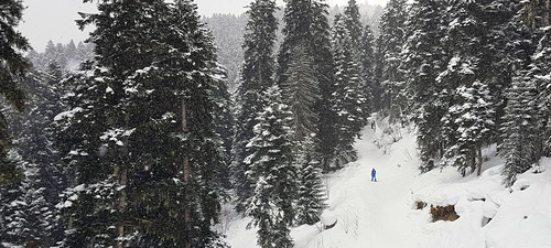 Mestia Ski Resort by: Konstantin RD