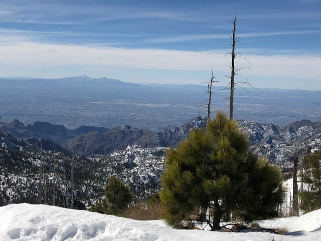 Tucson from top of Mount Lemmon, Mount Lemmon Ski Valley