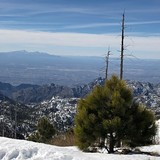 Tucson from top of Mount Lemmon, USA - Arizona