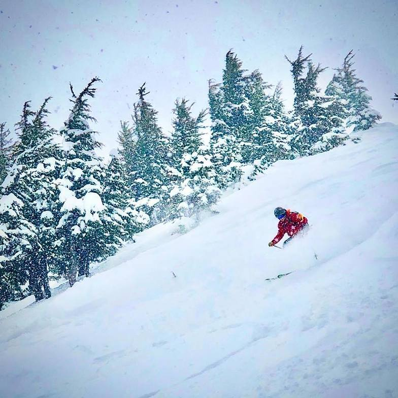 The most fresh snow in the world this week?, Alyeska Resort