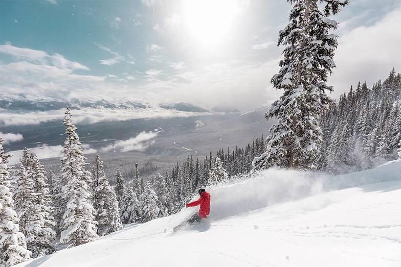 Marmot Basin snow