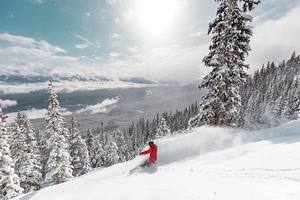 28cm of new snow, Marmot Basin photo