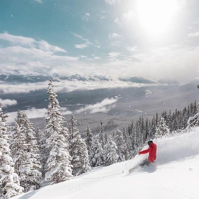 28cm of new snow, Marmot Basin