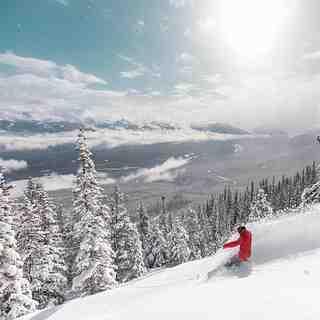 Marmot Basin Snow: 28cm of new snow